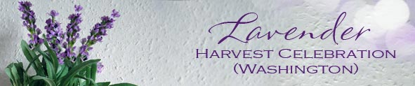 Lavender Harvest Celebration (Washington) : Flower Cards | Flower Ecards | Free Greeting Cards